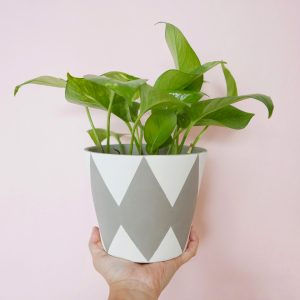 Harley Quinn (Neutral & White) Planter