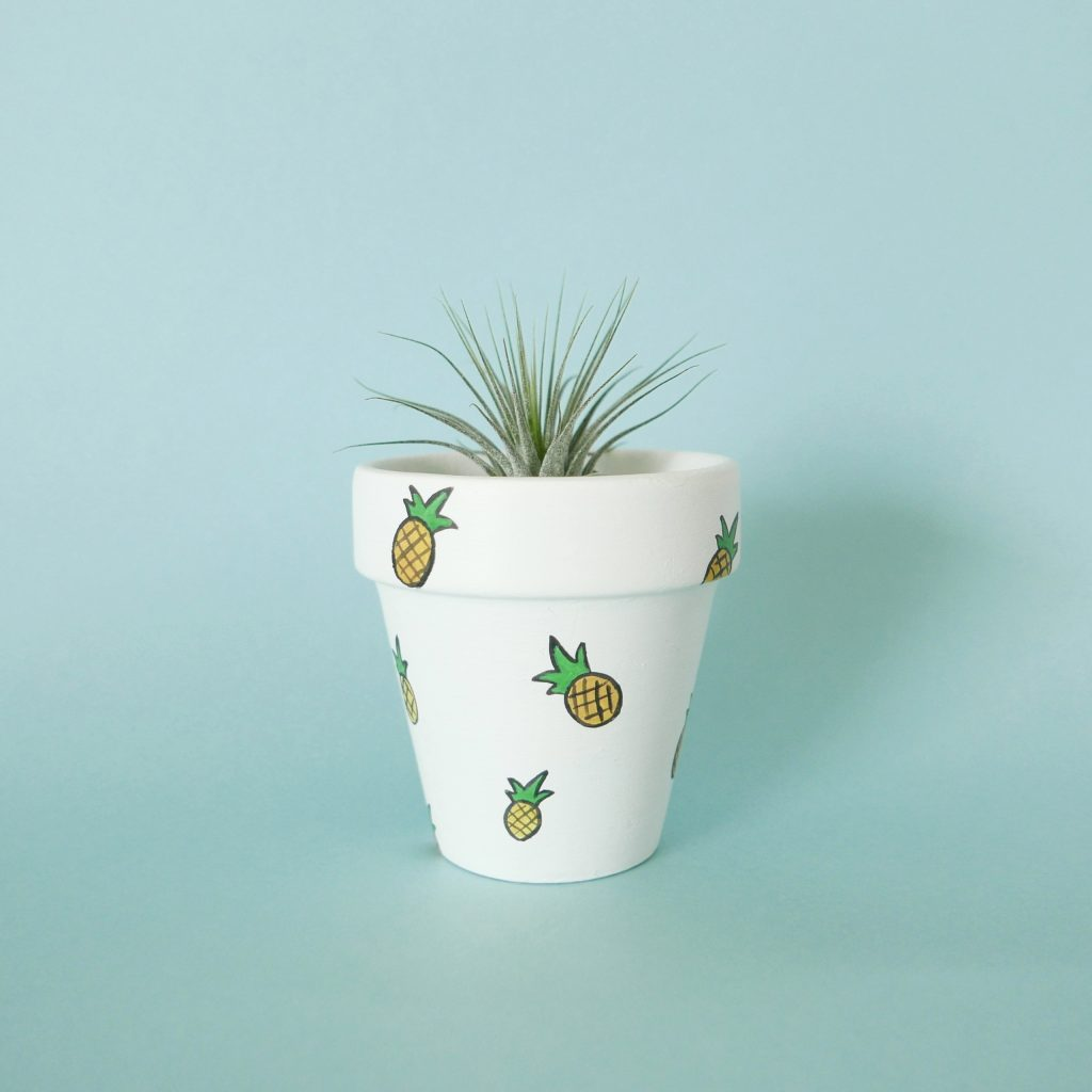 Pineapples Pot