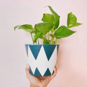 Harley Quinn (Blue and White) Planter