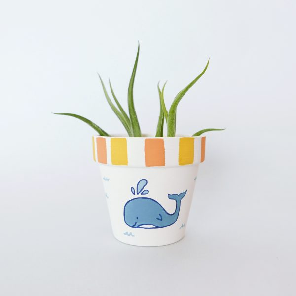 Whale of Time Pot