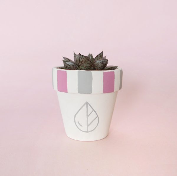 Hand Painted Pots with Pink and Grey Stripes and The Rain in Spain's logo