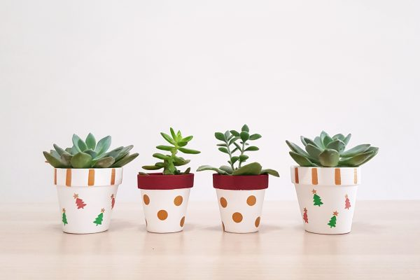 Christmas Plant Pots