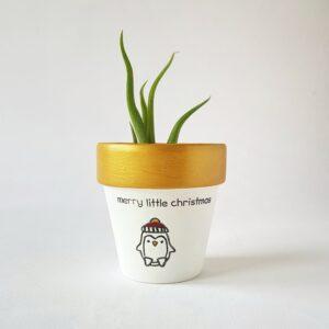 Merry Little Christmas (Penguin)