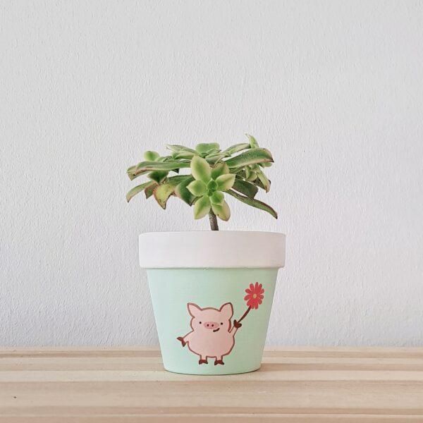 Positive Pig Pot with succulent
