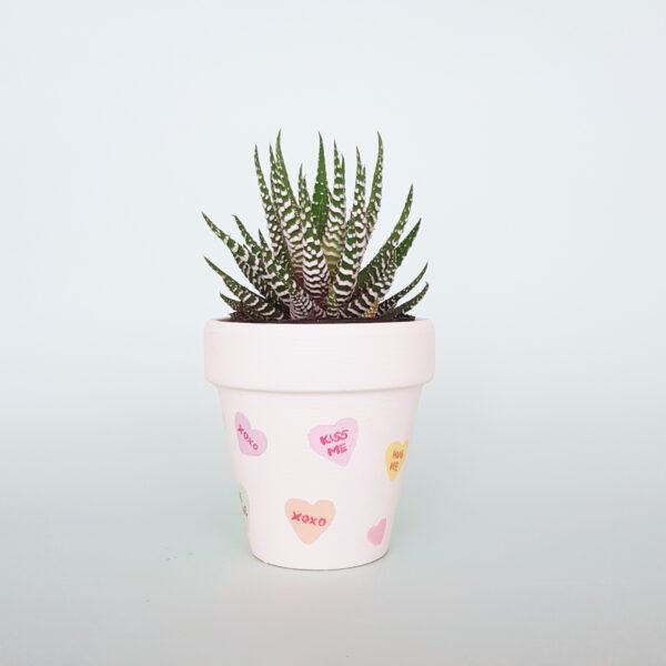 Conversation Hearts Plant Pot