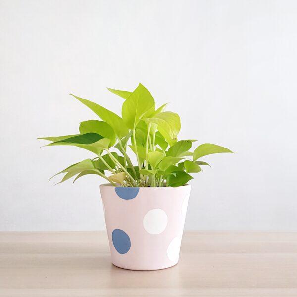 Pollyanna Pot (Powder Pink)