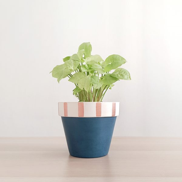 Candy Cane (Deep Blue) Pot