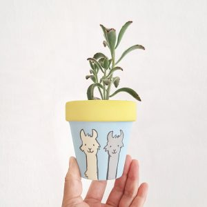 Amiable Alpacas Pot