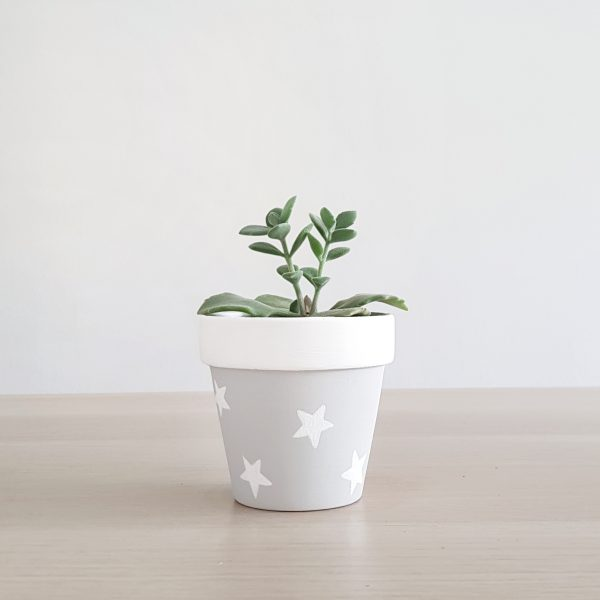 White Christmas (Stars) Pot