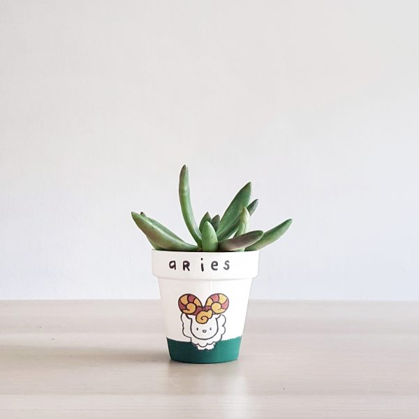Aries Zodiac Pot