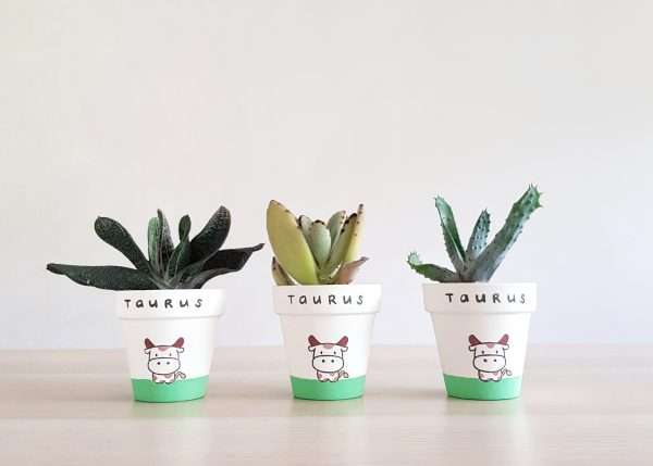 Zodiac Collection Taurus Pots